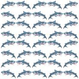 Pattern with sharks. White background Stock Photo