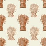 Pattern of the sheafs of wheat Stock Photography