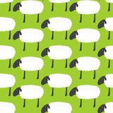 Pattern with sheep vector illustration