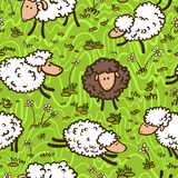 Pattern with sheeps. Cute doodle seamless pattern with sheeps Royalty Free Stock Photo
