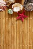 Pattern from shells on a wooden surface. A pattern of different shells and a starfish on a surface consisting of bamboo straws Royalty Free Stock Images