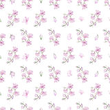 Pattern with small magnolias Royalty Free Stock Photo