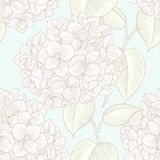 Pattern. Sprigs of blooming hydrangea. Engraved seamless pattern Stock Photography