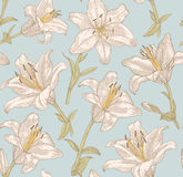 Pattern. Sprigs of blooming lily. Engraved seamless pattern Royalty Free Stock Image
