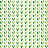 Pattern_spring Stock Photography