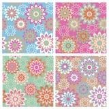 Pattern_Spring floral ilustração stock