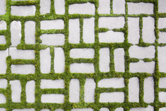 Pattern with a sprouted grass III Stock Photo