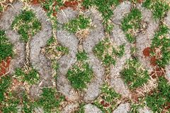 Pattern stone floor Stock Photo