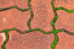 Pattern of Stone pavement, background Royalty Free Stock Photos