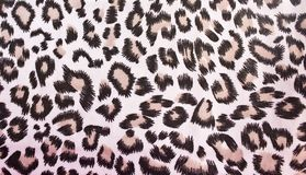 Pattern style of the bag Royalty Free Stock Photography