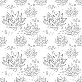 Pattern with succulent plants Royalty Free Stock Photos