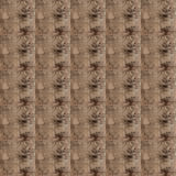 Pattern of the surface pattern of the old cement plaster wall Royalty Free Stock Images