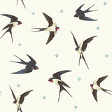 Pattern with swallows Royalty Free Stock Image