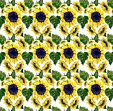 Sunflower pattern, tablecloth, background Stock Image