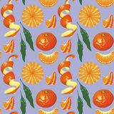 Pattern tangerines Stock Image
