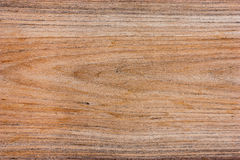 Pattern of teak wood. Royalty Free Stock Image
