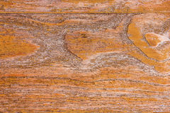Pattern of teak wood. Royalty Free Stock Images