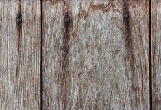 Pattern of teak wood. Royalty Free Stock Photos