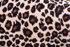 Pattern textile of leopard for background, texture Stock Images