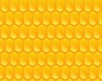 Pattern texture of Corn Stock Photos