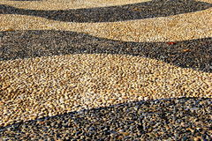 Pattern and texture of pebbled walkway Stock Images