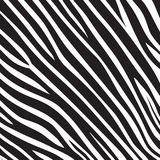 Pattern texture tiger zebra white stripe black jungle safari Vector Illustration