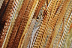 Pattern and texture of wood background Stock Photography