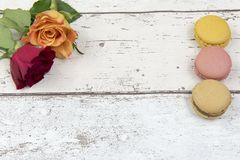 Multicoloured macaroons with roses on a white wooden background. Pattern of three multicoloured macaroons with roses on a white wooden background with copy space Royalty Free Stock Photos
