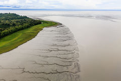 Pattern of tidal mud flats contrasts with green of forests on coastline Stock Photo