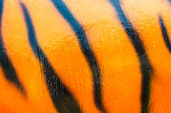 Pattern of a tiger skin texture and background Stock Photography