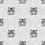 Pattern of tiger Royalty Free Stock Image