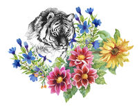 Pattern with tigers, yellow sunflowers and watercolor multicolored flowers on white background. Royalty Free Stock Images