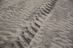 Pattern of Tire in Sand. Pattern of tractor tire in sand showing also the waves in the sand form the wind on the beach Royalty Free Stock Photo