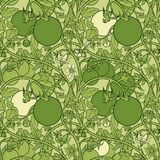 Pattern of tomato branch in a garden. Green and white. Royalty Free Stock Photo