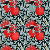 Pattern of tomato branch in a garden. Red and black. Royalty Free Stock Images