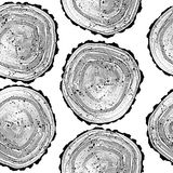 Pattern with tree black and white rings background. Nature wood wallpaper.  royalty free stock photo