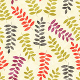 Pattern with trees. Seamless background. Royalty Free Stock Images