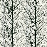 Pattern with trees silhouettes in black Royalty Free Stock Photography