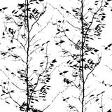 Pattern with trees silhouettes Royalty Free Stock Image