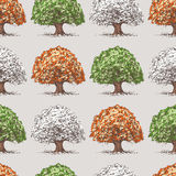 Pattern of trees at various times years Royalty Free Stock Images