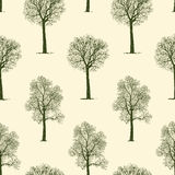 Pattern of trees Royalty Free Stock Photos