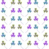 Pattern of trefoil hare cabbage. royalty free illustration