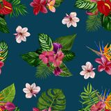 Pattern with tropical flowers and leaves. Watercolor illustration. royalty free stock images