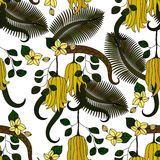 Pattern with tropical plants, flowers and citron Royalty Free Stock Photos