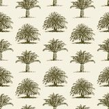 Pattern of tropical trees Royalty Free Stock Photos