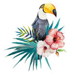 Pattern, tropical, watercolor Royalty Free Stock Image