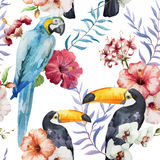 Pattern, tropical, watercolor Stock Photos