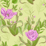 Pattern of tulip flowers with leaves 2 Royalty Free Stock Image