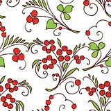 Pattern of twigs with berries Stock Photo
