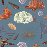 Pattern of underwater objects Royalty Free Stock Photo